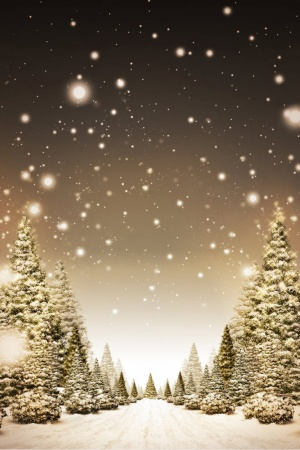 Christmas Night Mobile Wallpaper