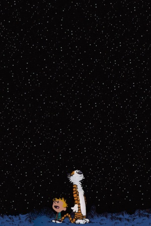Night Stars Mobile Wallpaper