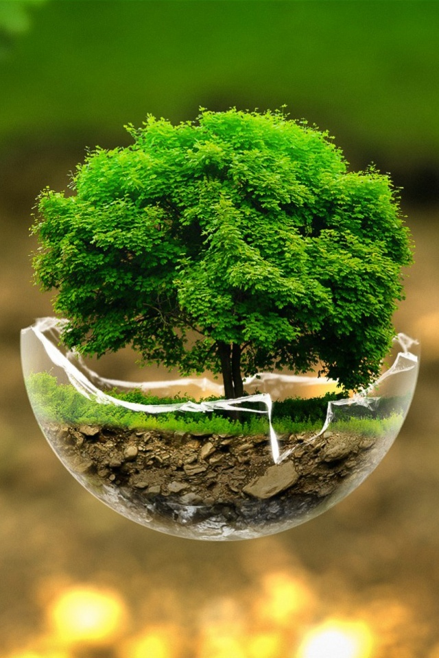 Green Nature Tree Mobile Wallpaper
