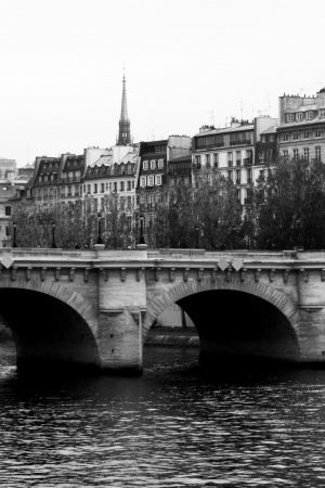 Paris Pont Neuf Monochrome Mobile Wallpaper