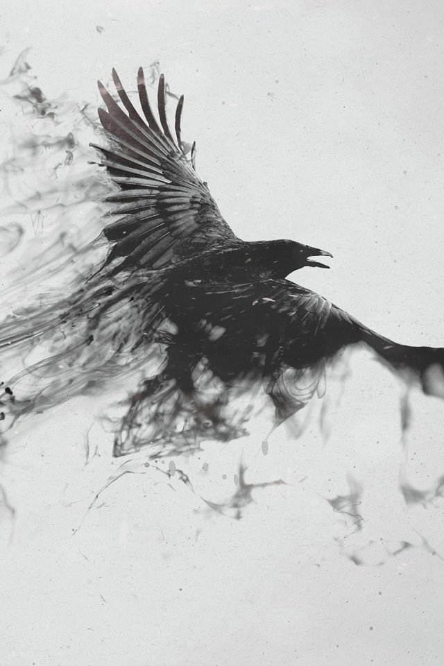 Birds black and white dark mobile wallpaper mobiles wall download now voltagebd Images