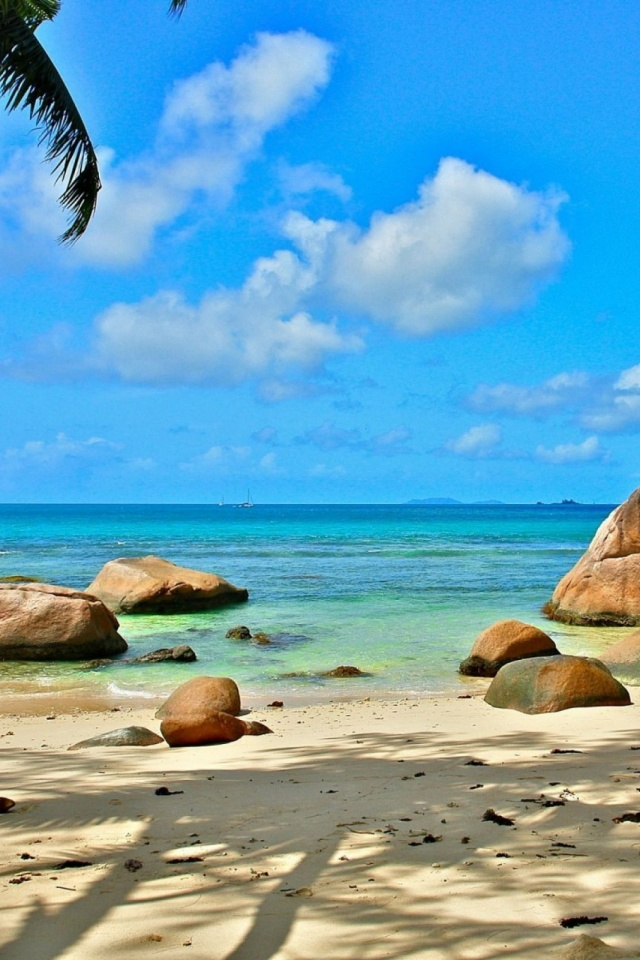 Beach Seychelles Mobile Wallpaper Mobiles Wall Download Android