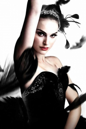 Black Swan Mobile Wallpaper
