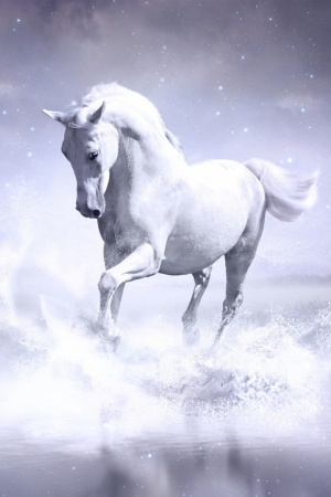 White Horse Mobile Wallpaper