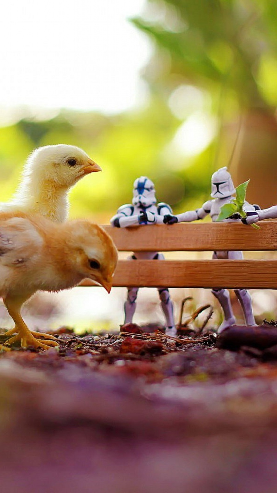 Chickens Star Wars Toys Bokeh Mobile Wallpaper Mobiles Wall