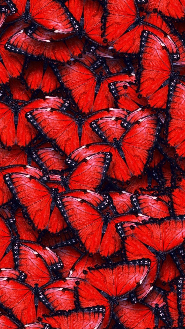 Red Butterflies Mobile Wallpaper Mobiles Wall