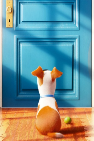 The Secret Life of Pets Movie Mobile Wallpaper