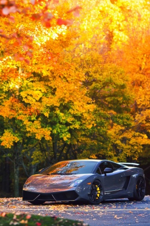 lp570 Mobile Wallpaper