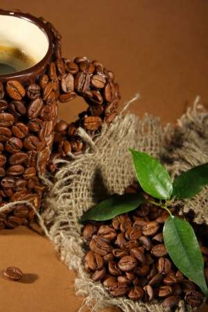 Cup Of Coffee Beans Leaves Mobile Wallpaper