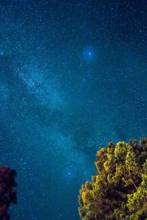 Starry sky Mobile Wallpaper