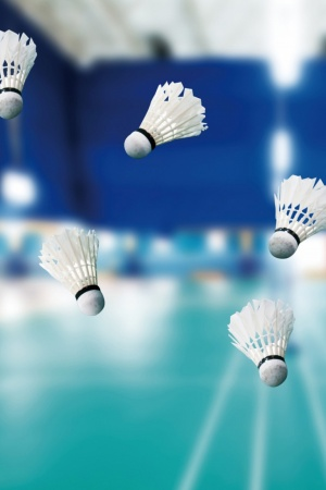 sport badminton badminton Mobile Wallpaper