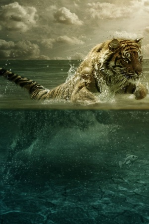 Tiger Playing in Water Mobile Wallpaper