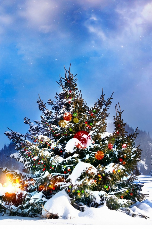 Christmas Trees Decorated Outside Mobile Wallpaper